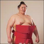 大相撲逸ノ城